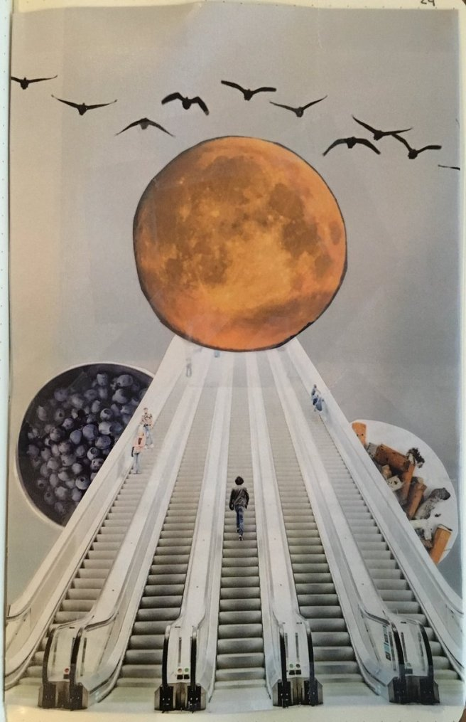 collage-bird-moon-blueberry-cigarette-escalator